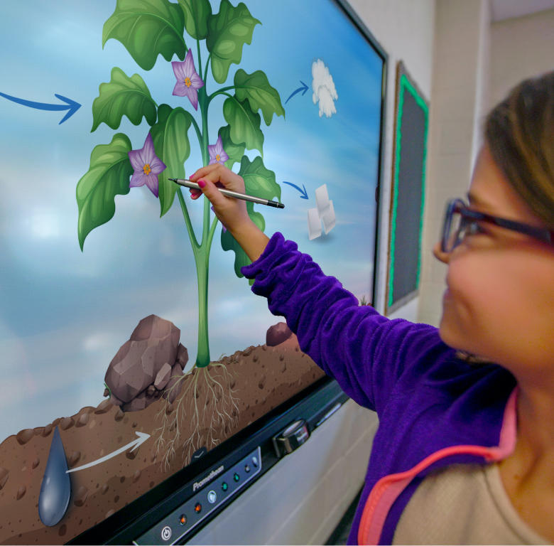 Girl painting on digital whiteboard in classroom.