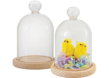 Glass Cloche – Pack of 10
