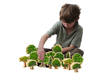 Wooden Australian Trees – Set of 10