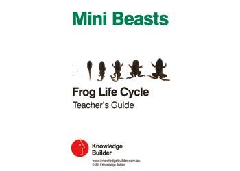 Mini Beasts Frog Life Cycle