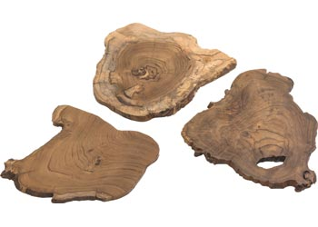 Natural Wood Slices – Set of 3