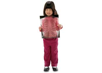 True To Life Human X-Rays – 18 Pieces