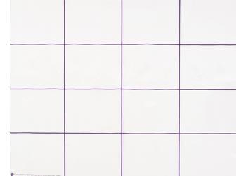 Bee-Bot & Blue-Bot Transparent Grid Mat