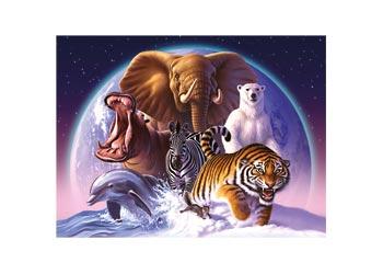 Poster Wild World