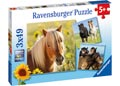 Ravensburger - Loving Horses Puzzle 3x49pc
