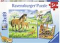Ravensburger - Cuddle Time Puzzle 3x49 pieces