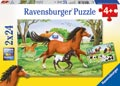 World of Horses Puzzle 2x24pc