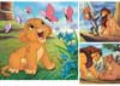 Rburg - HTTYD Dragon Rider Puzzle 3x49pc