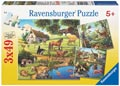 Ravensburger - Forest Zoo & Pets Puzzle 3x49 pieces