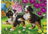 USA State Map Puzzle 100pc