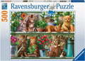 Ravensburger - Cats on the Shelf Puzzle 500 pieces