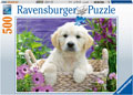Ravensburger - Sweet Golden Retriever Puzzle 500 pieces