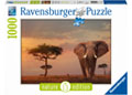 Rburg - Elephant of the Massai Mara 1000pc