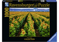 Ravensburger - Fields of Gold Puzzle 1000pc