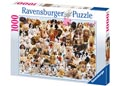 Rburg - Dogs Galore! Puzzle 1000pc