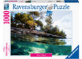 Ravensburger - Points of View 1000 pieces