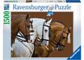 Elegant Horses 1Puzzle 500pc