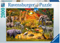 Ravensburger - Gathering at the Waterhole 2000 pieces