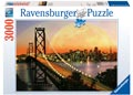Amazing San Francisco Puzzle 3000pc