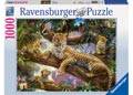 Ravensburger - Leopard Family Puzzle 1000pc