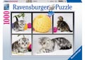 A Yarn About Cats Puzzle 1000pc