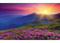 Ravensburger - Early Morning Mountains Nature Puzz 1000pc