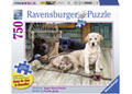 Ravensburger - Ruff Day Puzzle 750 pieces Large Format