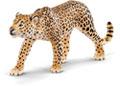 Schleich - Leopard