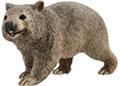 Schleich - Wombat