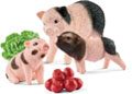 Schleich - Miniature Pig Mother & Piglets