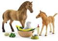 Schleich - Sarah's Baby Animal Care